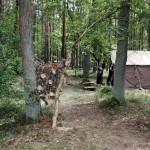 2016.08.14 80. Karolinów - Zwiedzanie obozu_1281x854